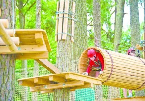 Frontier Town High Ropes Adventure Park