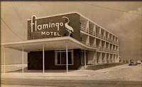 Flamingo Motel Mid-Week Splash Image