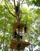 Frontier Town High Ropes Adventure Park 25% Off Regular Admission Image