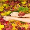 A Perfect Face European Day Spa Save $10 on Autumn Pedicures Image