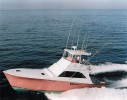 Muff Diver Sportfishing Charters May Special: 12 Hour Offshore Deep Drop Tilefish Trip Image