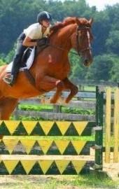 Holly Ridge Farm Equestrian Center