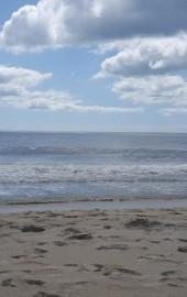North Surf Park