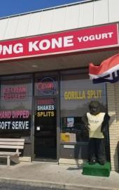 King Kone