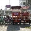 B and F Bikes
