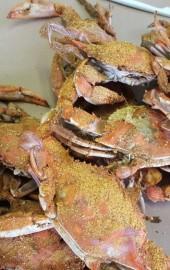 OCM Crabs