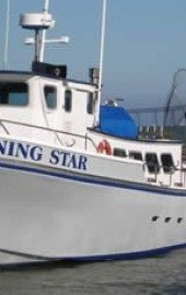 Morning Star Fishing