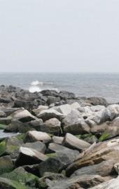 Assateague Island National Seashore