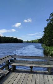 Pocomoke River State Park: Milburn Landing