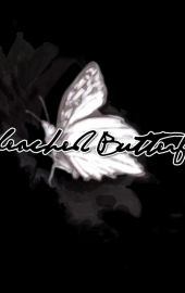 Bleached Butterfly Floral & Home Boutique