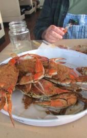 Crush N Crab