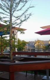 The Cultured Pearl Restaurant & Sushi Bar