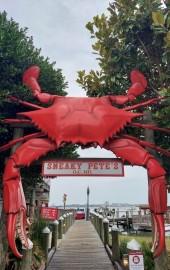 Hooper's Crab House & Sneaky Pete's