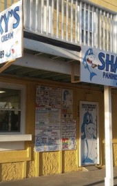 Sharky's Paninis & Ice Cream