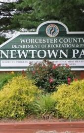 Newtown Park