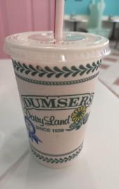 Dumser's Dairyland