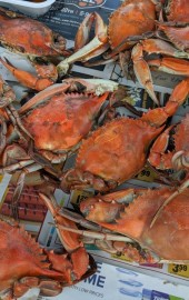 Victoria's Crab House