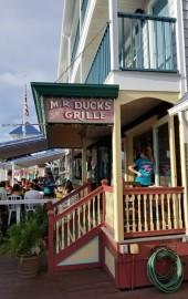 M.R. Ducks