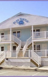 Blue Turtle Apartments