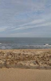 Surf Village 4