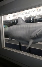 Ocean City Life-Saving Museum