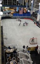 Carousel Ice Skating Rink