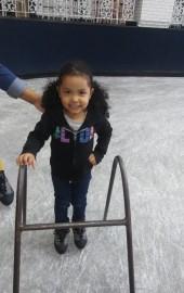 Carousel Skating Rink