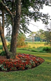 Eagle's Landing Golf Course