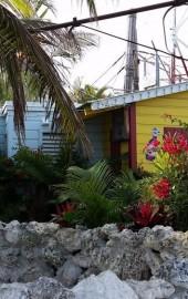Seacrets Jamaica USA