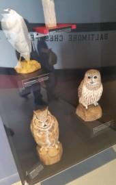 Delmarva Discovery Center