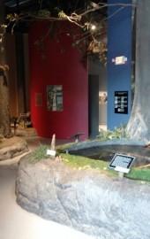Delmarva Discovery Museum