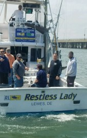 Restless Lady Charters