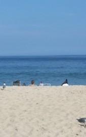 Sandpiper Dunes Condominium