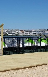 Back Bay Adventures: Jet Skis & Fishing Ocean City MD