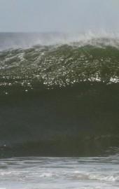 Wave Riding School