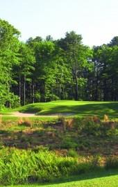 Play Golf in OC
