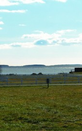 Equestrian Shores