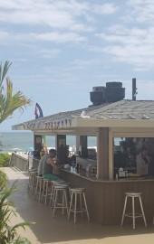 The Jungle Bar & Restaurant